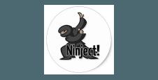 Logo Ninject Technologie w Aplitt Tworzenie Oprogramowania